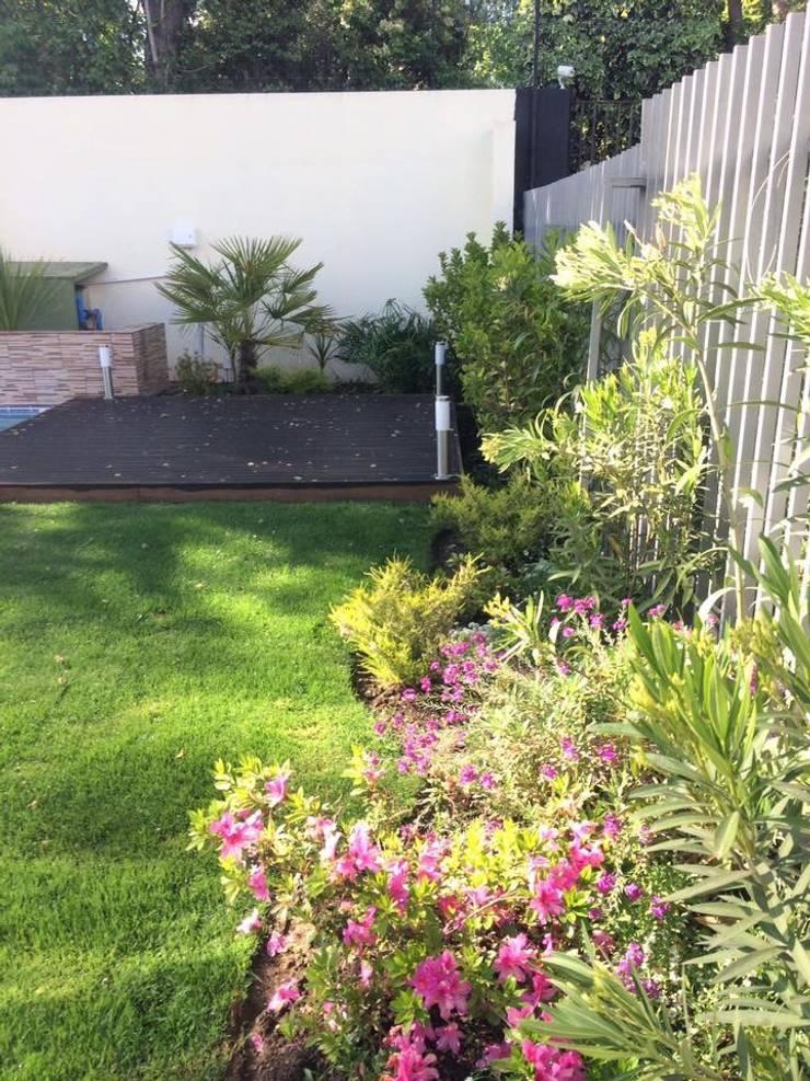 Floración: Jardines de estilo  por Bächler Paisajismo