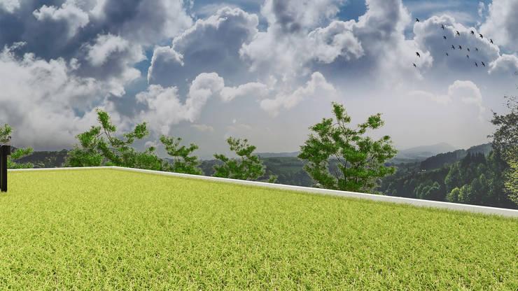 Cubierta verde: Terrazas de estilo  por DUSINSKY S.A.,Moderno