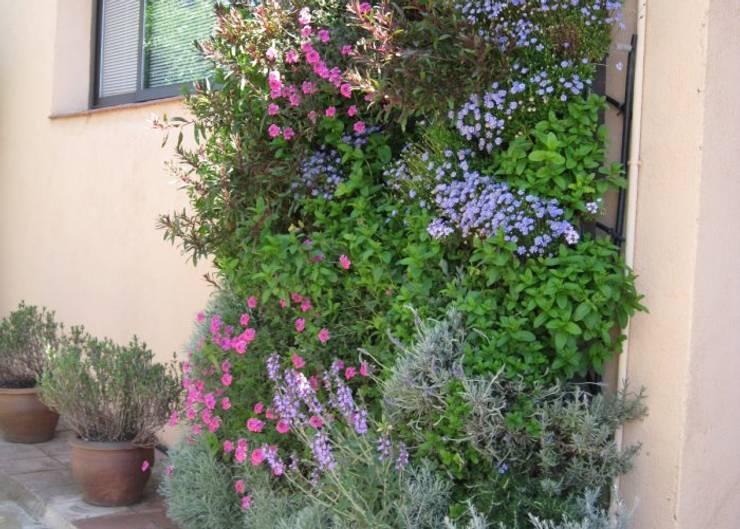 Decora con jardines verticales en Barcelona y Madrid por Buresinnova: Jardines de estilo mediterráneo de BURESINNOVA S.A.