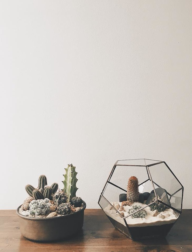 Duo terrario & base cobre con Cactus:  de estilo  por Marga, Moderno Vidrio