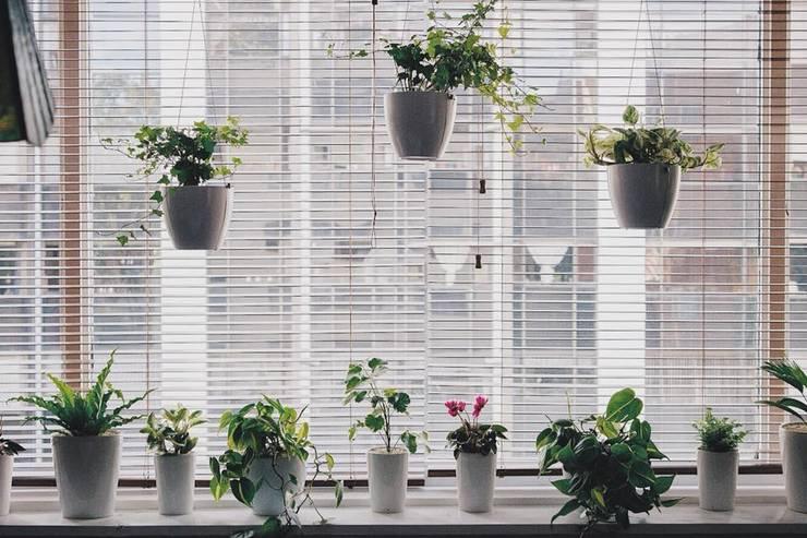 Decoración vegetal suspendida para vivienda:  de estilo  por Marga, Moderno Cerámica