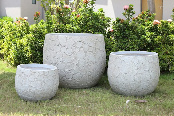Interior landscaping by Glastres Greens