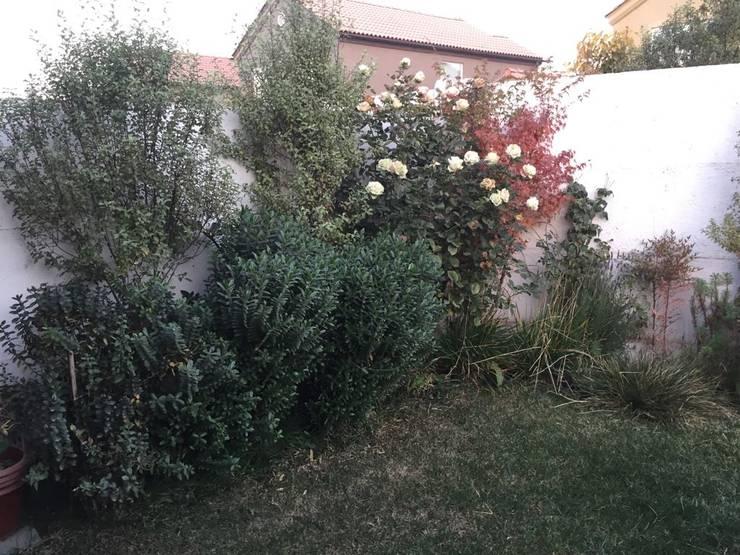 Jardín particular Chicauma: Jardines de estilo  por Agroinnovacion paisajismo sustentable