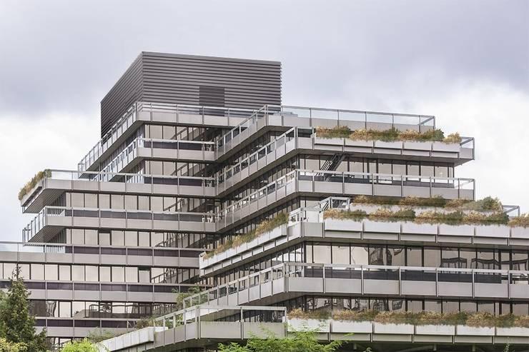 Domotica installatie Estel Residence Nijmegen:  Trap door Controlux Domotica, Modern