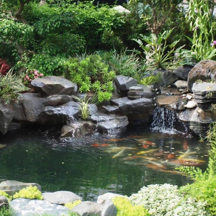 Non bộ có thác nước :   by Công Ty Thi Công Và Thiết Kế Tiểu Cảnh Non Bộ