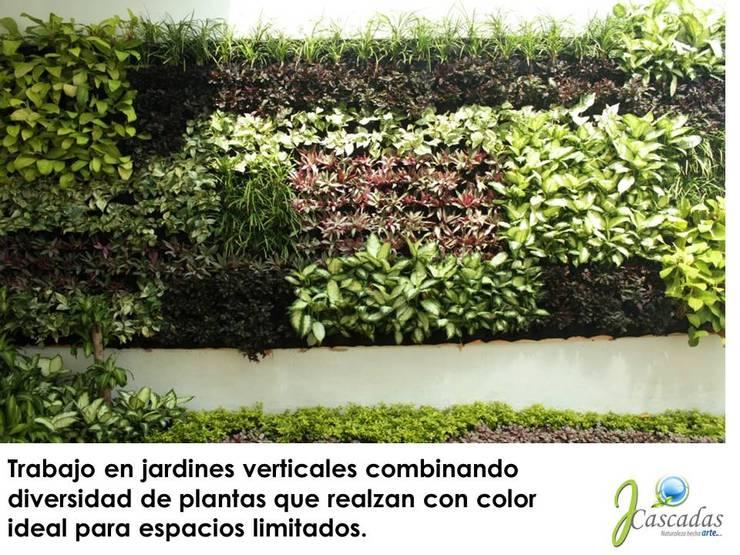 Jardin Vertical: Jardín de estilo  por JCASCADAS