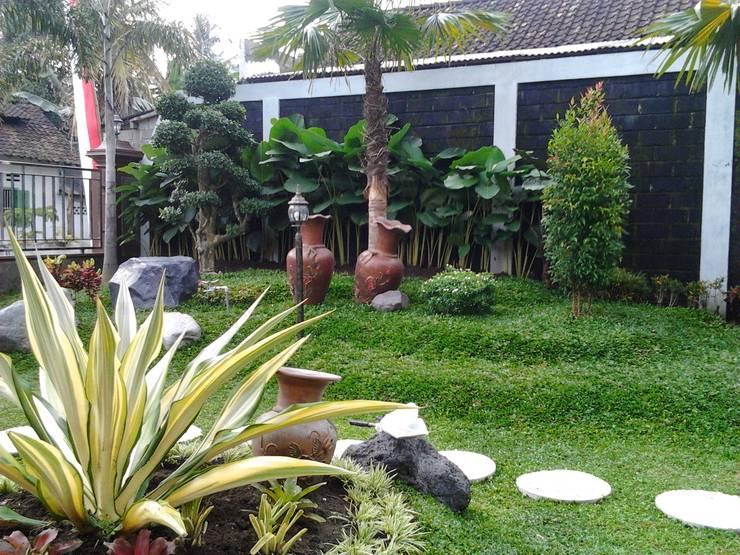 Taman Rumah Dengan Maskot Bonsai Dolar :  Kantor & toko by Tukang Taman Surabaya - flamboyanasri