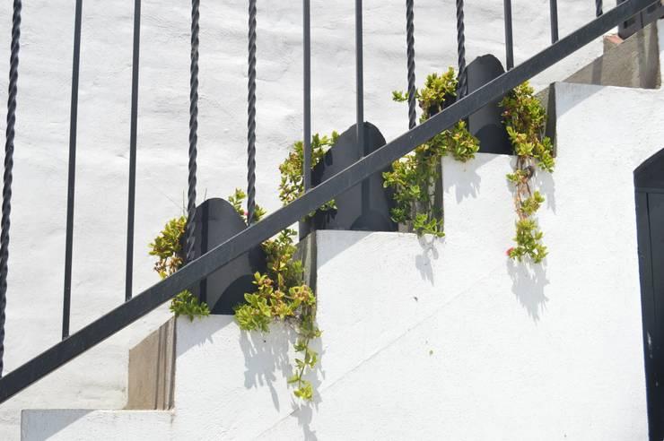 Escaleras de estilo  por Zona Arquitectura Más Ingeniería