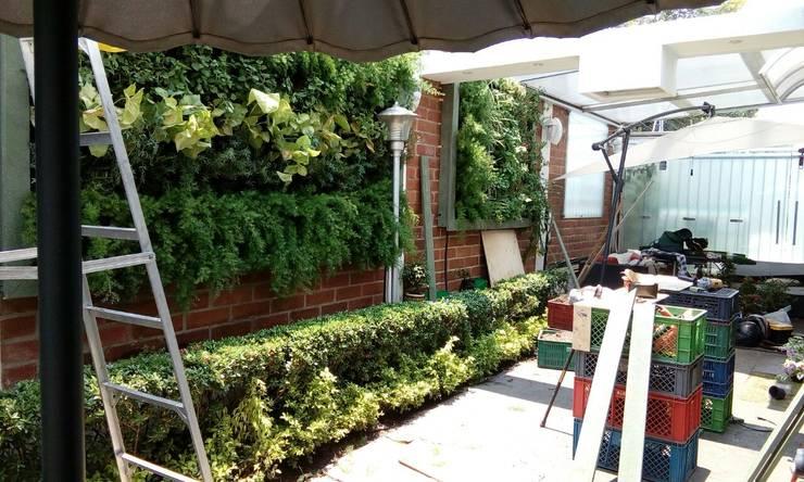 Jardines Verticales: Jardines frontales de estilo  por Globo Natural