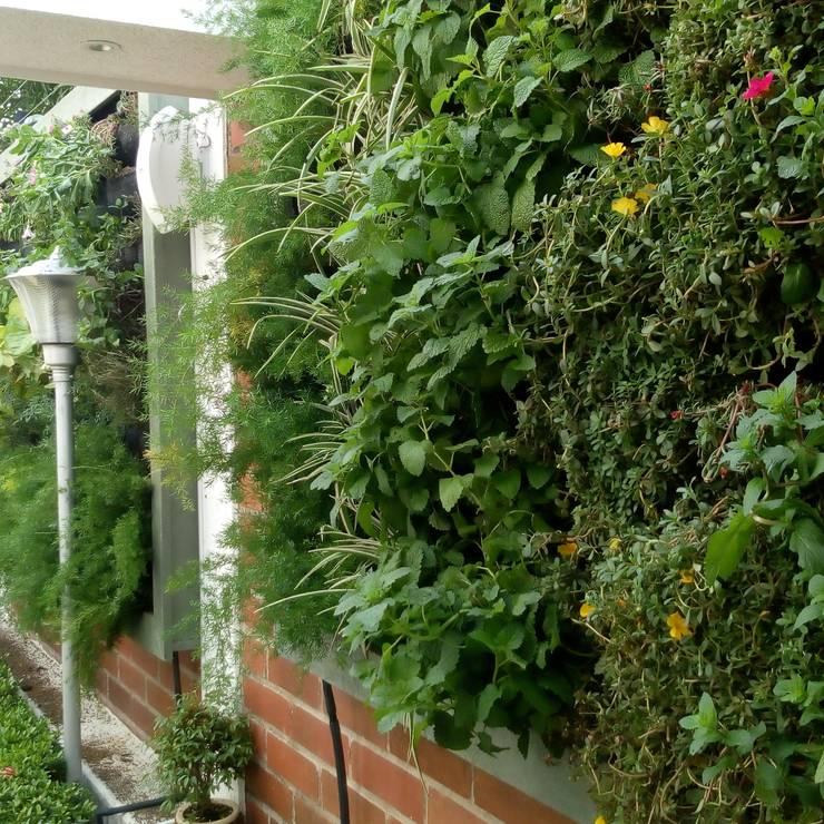 Jardines Verticales: Jardines de invierno de estilo  por Globo Natural