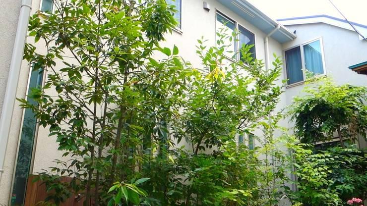 雑木の庭 お手入れ前: 庭や煌久が手掛けたです。