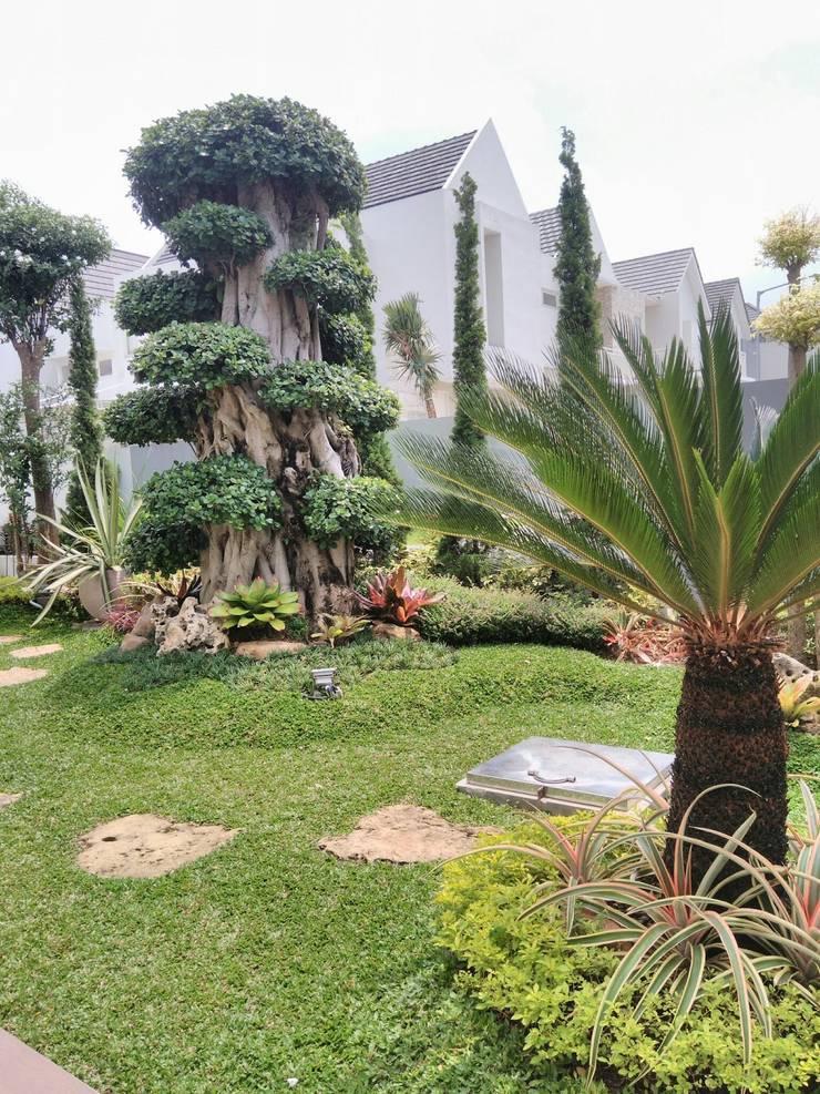 Jasa Tukang Taman Surabaya:  Taman batu by Tukang Taman Surabaya - Alam Asri Landscape