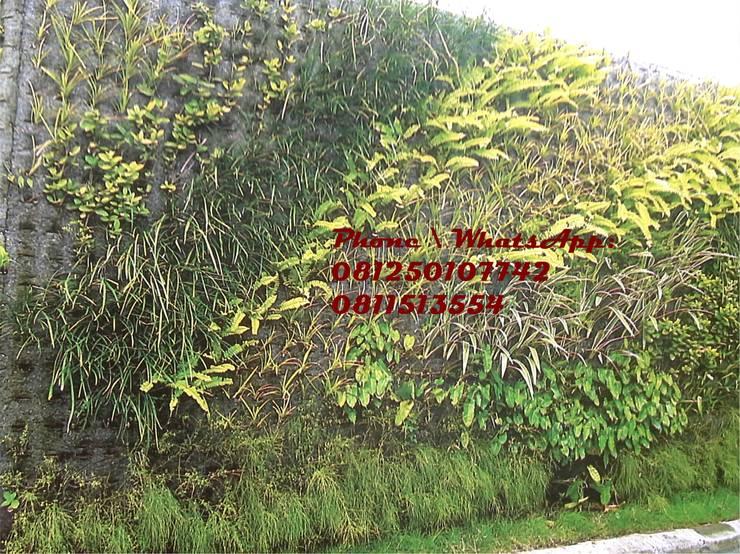 Taman Vertikal - vertical garden untuk rumah:  Garden  by TUKANG TAMAN SURABAYA - jasataman.co.id