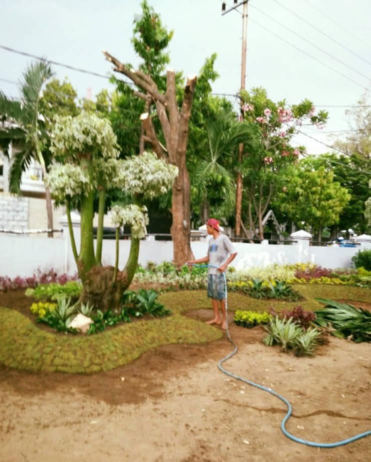 Taman Halaman Depan Rumah indah:  Garden  by TUKANG TAMAN SURABAYA - jasataman.co.id
