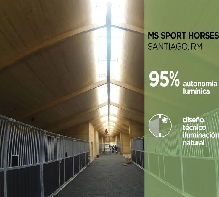 MS Sport Horses: Chalets de estilo  por Pasiva