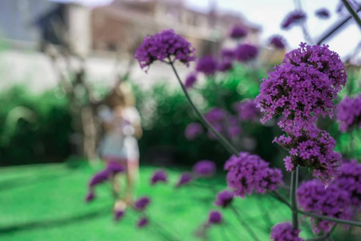 Realizzazione giardino feng shui a roma for Giardino orientale