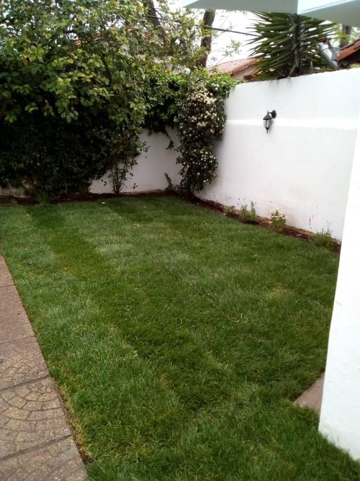 Jardín de lavandas : Jardines de estilo  por Agroinnovacion paisajismo sustentable