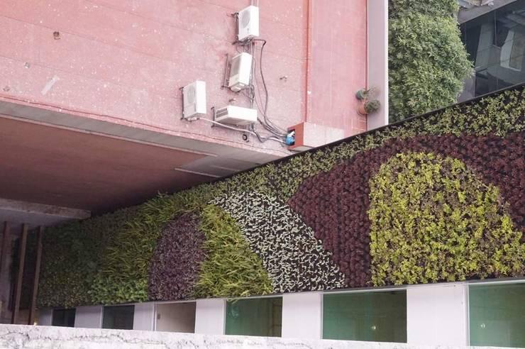 Muros Verdes: Edificios de Oficinas de estilo  por Designo Arquitectos