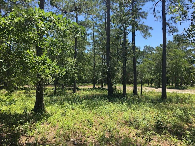 457 Deke Ct. – 0.42 Acres:   by Oakwood Ventures by Jones Pharr