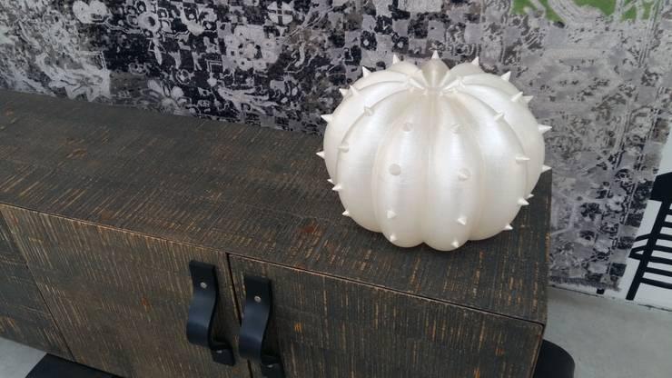 Lampada Desert Light modello Echinocactus Pearl: Casa in stile  di SeFa Design by nature