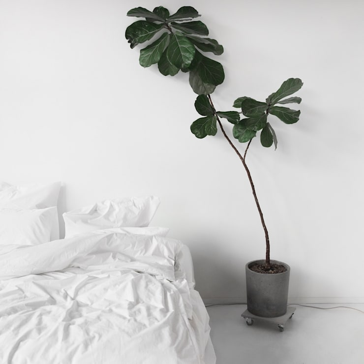 Percale Single Combo:  Bedroom by Bedroommood