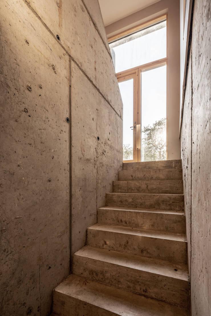 Escalier de style  par Adrian James Architects