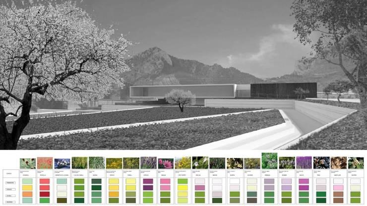 สวนแบบเซน โดย Carlos Gallego, เมดิเตอร์เรเนียน
