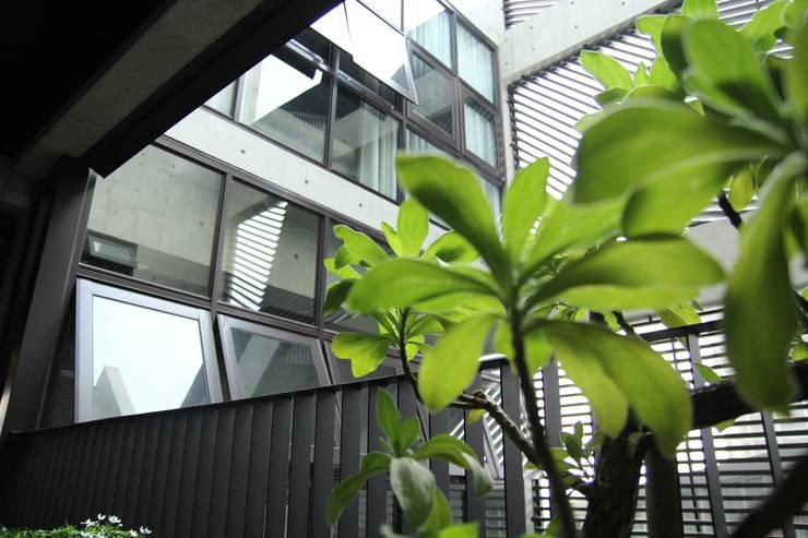 樓梯間-2:   by 鵝牌氣密窗-台中直營店