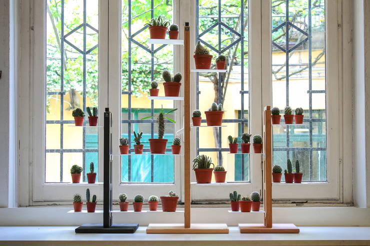 Paisajismo de interiores de estilo  de Le zie di Milano