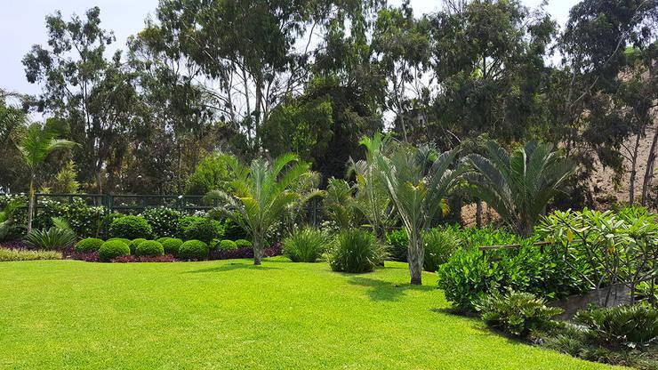 Un jardín donde el cliente se pueda sentir en un oasis particular.: Jardines de estilo  por Marcia Lenz Paisajismo