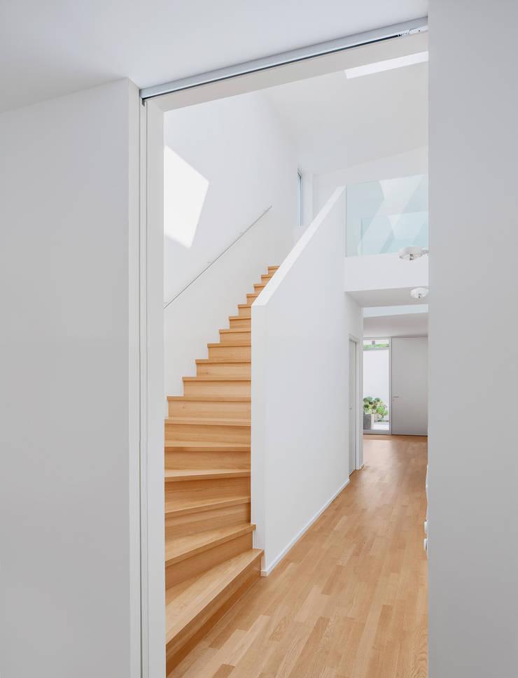 Wohnhaus C in Mainz Flur:  Flur & Diele von Lennart Wiedemuth / Architekturfotografie