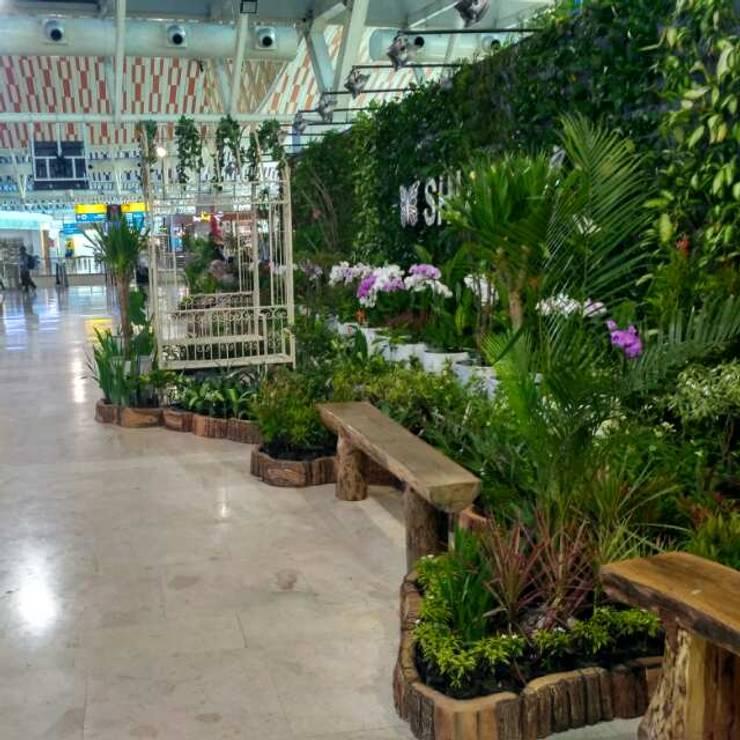 Taman Vertikal Bandara (Lapangan Terbang):  Lapangan terbang by Tukang Taman Surabaya - flamboyanasri