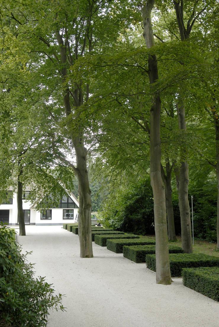 Trunk cathedral:  Garden by Andredw van Egmond  |  designing garden and landscape