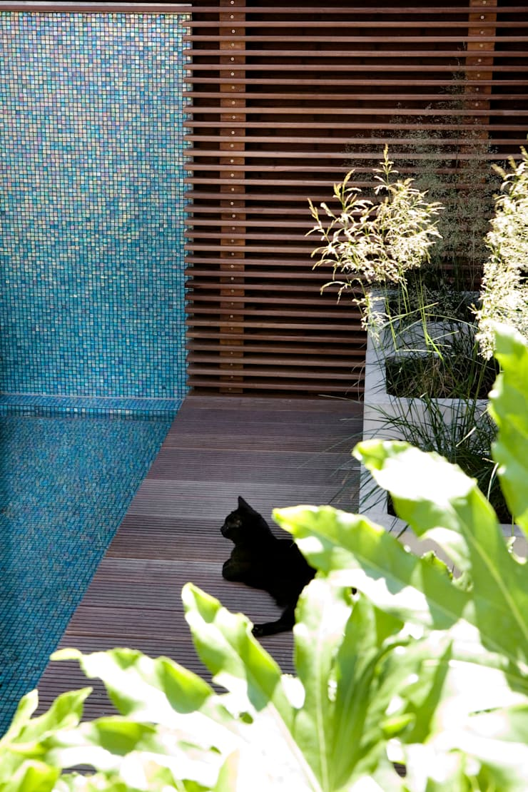 ​Patio garden:  Garden by Andredw van Egmond  |  designing garden and landscape
