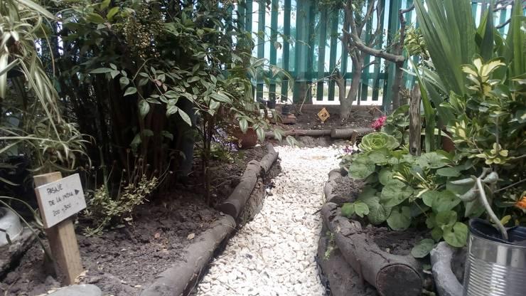 Príncipe Tobías y Pasaje de la India : Jardines con piedras de estilo  por DUSINSKY S.A.,