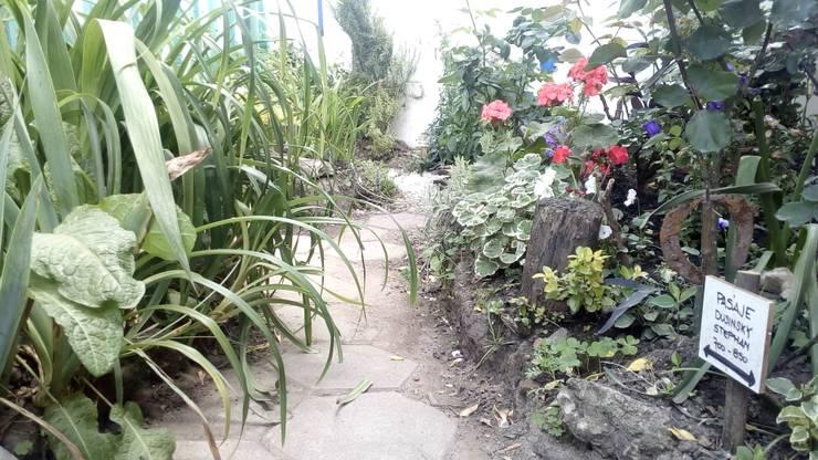 Pasaje Stephan Dusinsky: Jardines con piedras de estilo  por DUSINSKY S.A.,