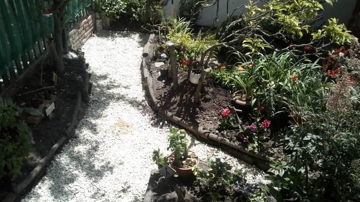 Paseo de La Almendra - Aereo: Jardines con piedras de estilo  por DUSINSKY S.A.,