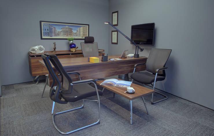 ARTERRA MİMARLIK LTD.ŞTİ. – ÇALIŞMA ALANI:  tarz Ofis Alanları