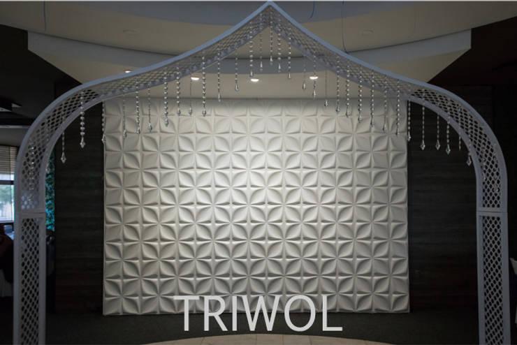 Group Enerji Yapı Dekorasyon – 3d Duvar Paneli TRIWOL: modern tarz , Modern Kâğıt