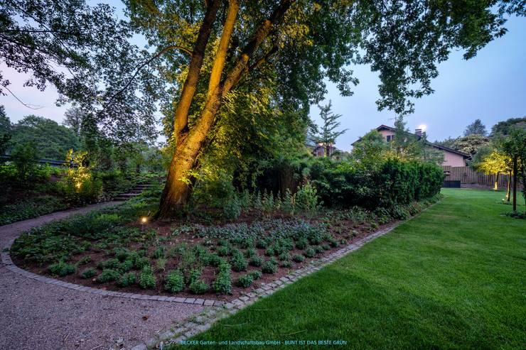 Beleuchtung im Garten:  Garten von BECKER Garten- und Landschaftsbau GmbH,Modern