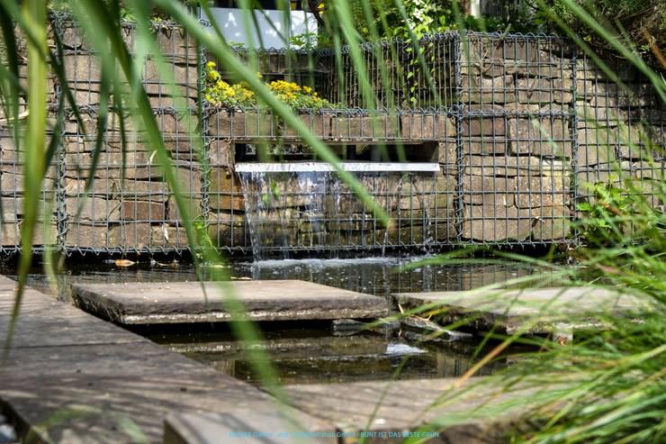 Wasserfall aus Edelstahlschütte:  Gartenteich von BECKER Garten- und Landschaftsbau GmbH,Klassisch