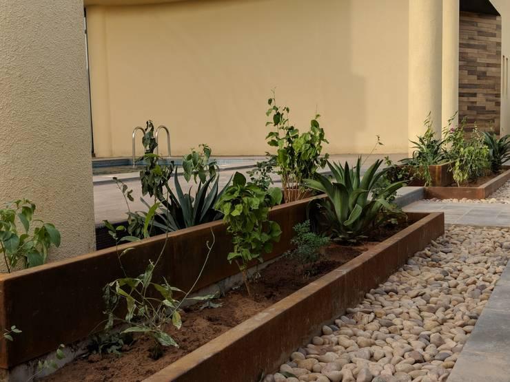 مسبح حديقة تنفيذ FN Design