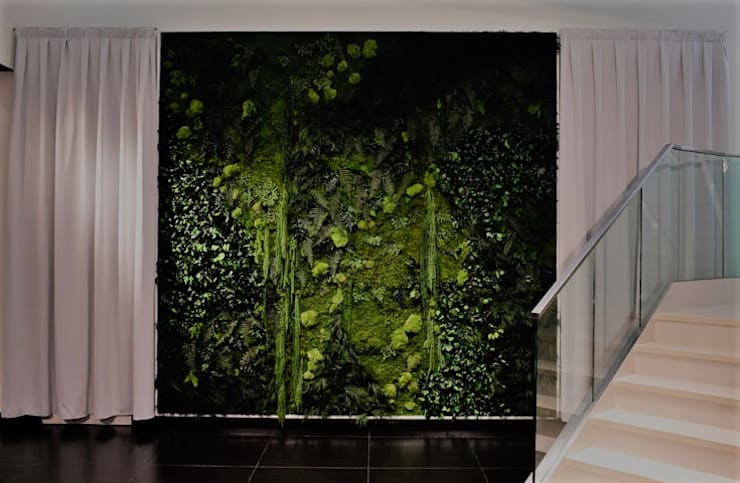 Recubrimientos:  Interior landscaping by Atemporanea