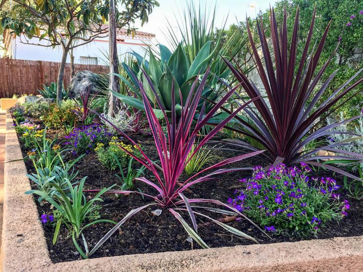 Detalle del parterre central: Jardines de estilo  de Nosaltres Toquem Fusta S.L.