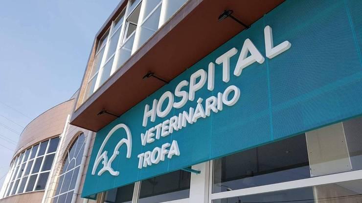 ミニマルな病院 の MIA arquitetos ミニマル 金属