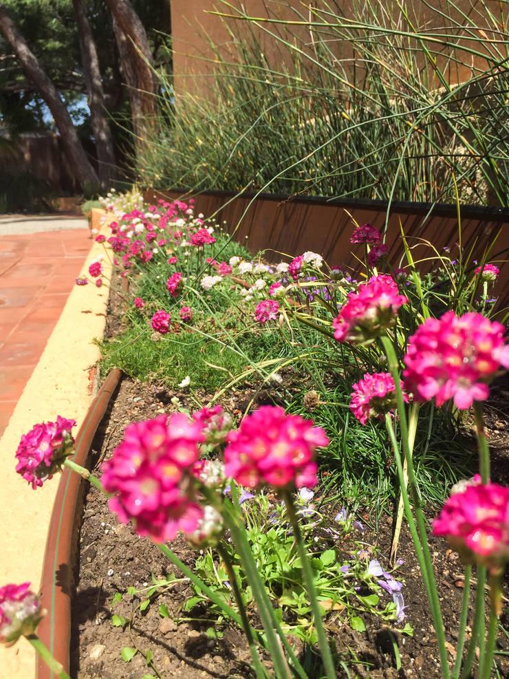 Detalle jardinera lateral a la casa.: Jardines de estilo  de Nosaltres Toquem Fusta S.L.