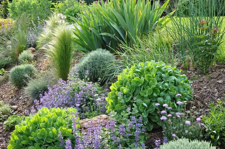 JARDIN EN ESSONNE - Un jardin romantique, à l\'anglaise par Sophie ...