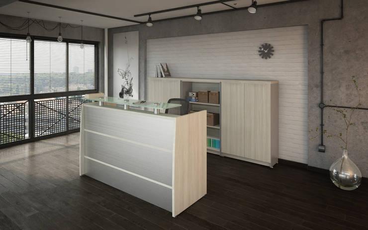 Recepción: Oficinas y tiendas de estilo  por GREAT+MINI