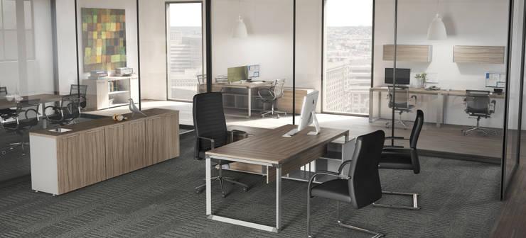 Estritorio Ejecutivo: Estudios y oficinas de estilo  por GREAT+MINI