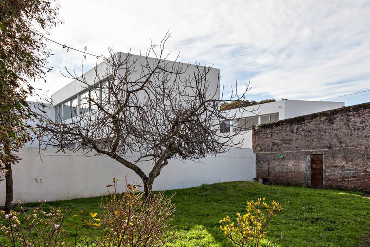 Diseño de 4 Viviendas con Patio en La Plata por por SMF Arquitectos: Casas unifamiliares de estilo  por SMF Arquitectos  /  Juan Martín Flores, Enrique Speroni, Gabriel Martinez,